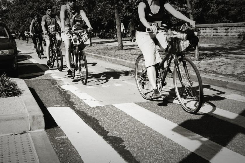 bikers on bike lane