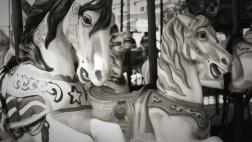 carousel horses 04262014