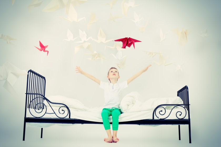 little boy in bed with birds