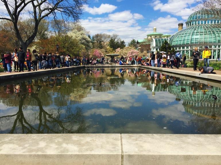 conservatory - botanic - brooklyn ny 2015