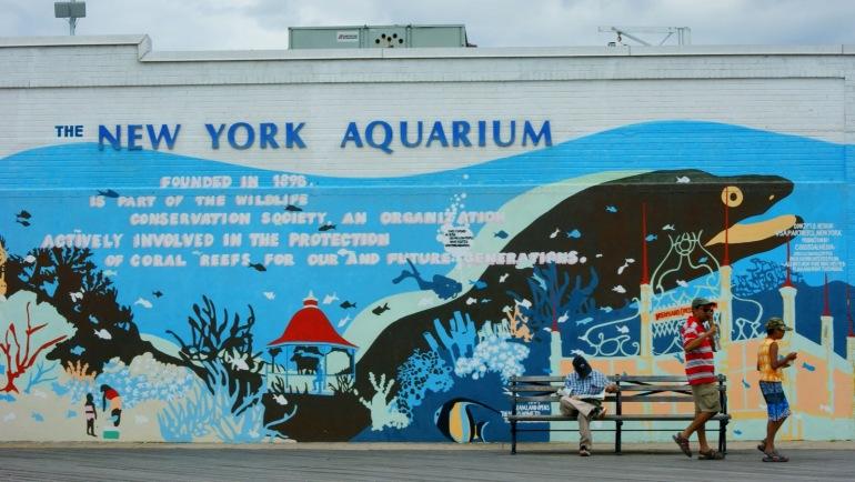 ny aquarium